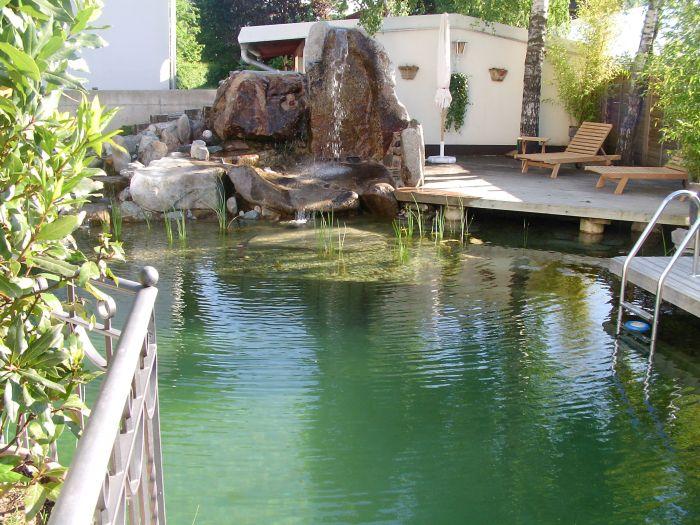 Schwimmteich12