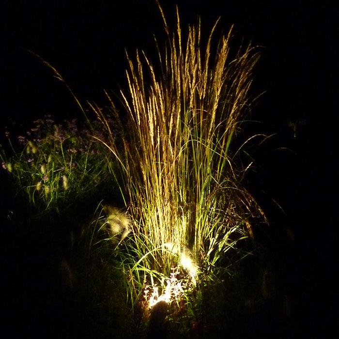 beleuchtung-bewaesserung-2